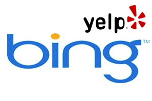 Write a Bing Review